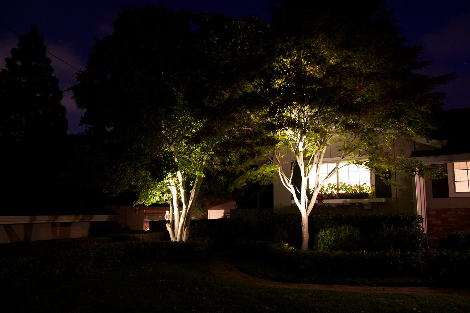Exterior tree illumination diode led for Landscape lighting packages